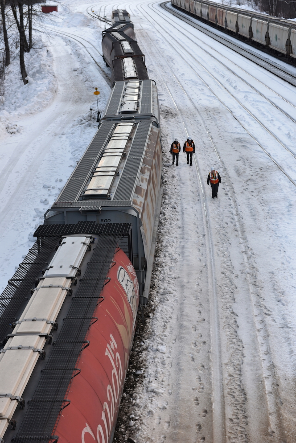 Updated: CP Rail train derails in Revelstoke - Revelstoke